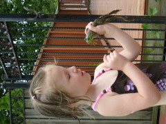 Ashlyn talking to Frog