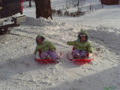 Twins's first sled ride!
