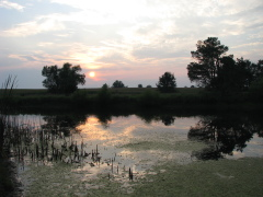Sundown over an Illinois farm pond