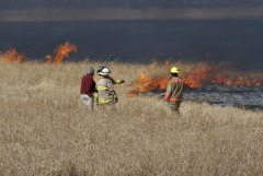 Fire At Spring Lake